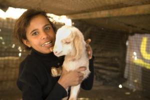 Goat project Jordan