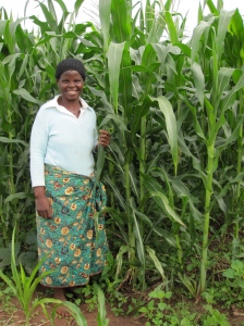 A farmer in a southern region of Malawi shows off her maize, grown using Conservation Agriculture techniques. Photo courtesy of Stephanie McDonald.