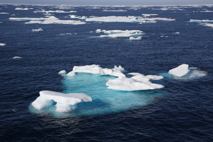 Ice floe in the canadian arctic